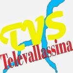 TELEVALLASSINA logo